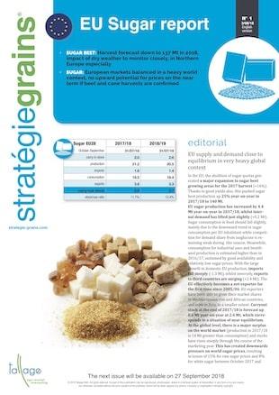 Stratégie grains - Sugar Report